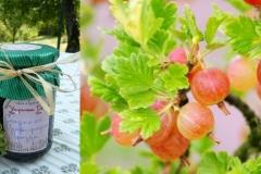 Сладко-от-цариградско-грозде